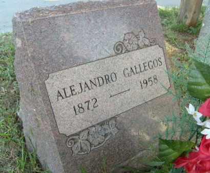 GALLEGOS, ALEJANDRO - Boulder County, Colorado | ALEJANDRO GALLEGOS - Colorado Gravestone Photos