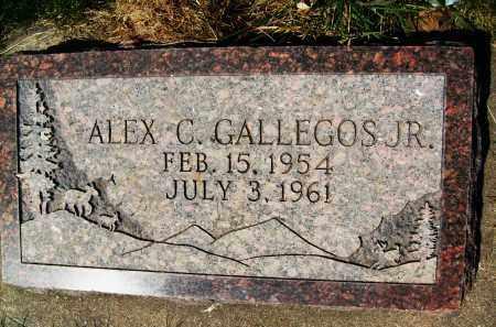 GALLEGOS, ALEX C., JR. - Boulder County, Colorado | ALEX C., JR. GALLEGOS - Colorado Gravestone Photos