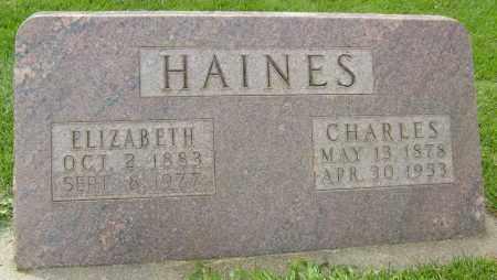 HAINES, ELIZABETH - Boulder County, Colorado | ELIZABETH HAINES - Colorado Gravestone Photos