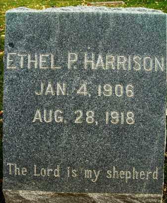 HARRISON, ETHEL P. - Boulder County, Colorado | ETHEL P. HARRISON - Colorado Gravestone Photos