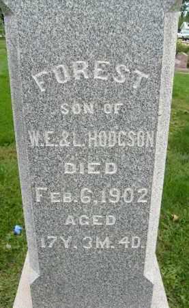 HODGSON, FOREST - Boulder County, Colorado | FOREST HODGSON - Colorado Gravestone Photos