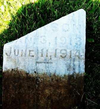 JOHNSON, ESTER - Boulder County, Colorado | ESTER JOHNSON - Colorado Gravestone Photos