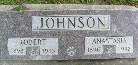 JOHNSON, ANASTASIA - Boulder County, Colorado | ANASTASIA JOHNSON - Colorado Gravestone Photos