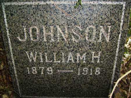 JOHNSON, WILLIAM H. - Boulder County, Colorado | WILLIAM H. JOHNSON - Colorado Gravestone Photos