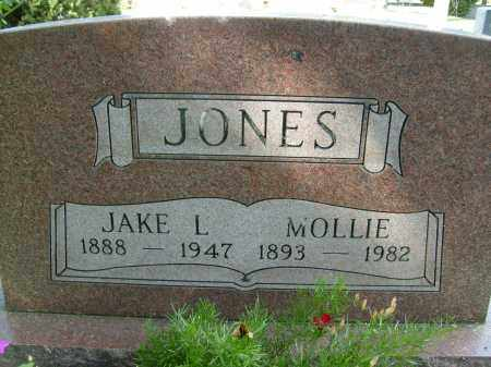 JONES, JAKE L. - Boulder County, Colorado | JAKE L. JONES - Colorado Gravestone Photos