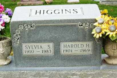 KLINE, SYLVIA S. (HIGGINS) - Boulder County, Colorado | SYLVIA S. (HIGGINS) KLINE - Colorado Gravestone Photos