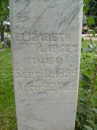 LIPSEY, ELIZABETH - Boulder County, Colorado   ELIZABETH LIPSEY - Colorado Gravestone Photos