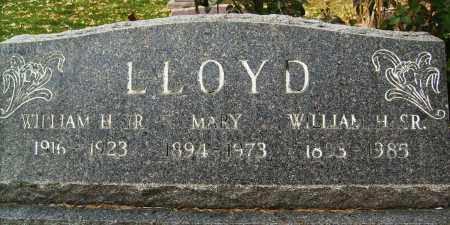 LLOYD, WILLIAM H., JR. - Boulder County, Colorado | WILLIAM H., JR. LLOYD - Colorado Gravestone Photos