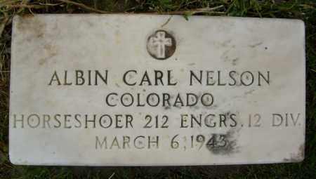 NELSON, ALBIN CARL - Boulder County, Colorado | ALBIN CARL NELSON - Colorado Gravestone Photos