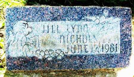 NICHOLS, JILL LYNN - Boulder County, Colorado   JILL LYNN NICHOLS - Colorado Gravestone Photos