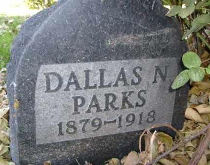 PARKS, DALLAS N. - Boulder County, Colorado | DALLAS N. PARKS - Colorado Gravestone Photos