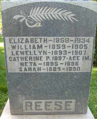 REESE, LEWELLYN - Boulder County, Colorado | LEWELLYN REESE - Colorado Gravestone Photos