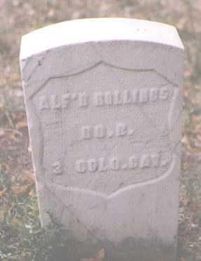 ROLLINGS, ALFRED - Boulder County, Colorado | ALFRED ROLLINGS - Colorado Gravestone Photos