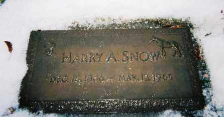 SNOW, HARRY - Boulder County, Colorado | HARRY SNOW - Colorado Gravestone Photos