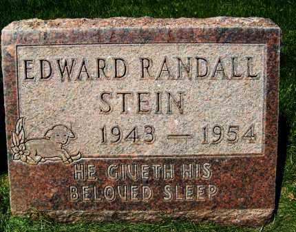 STEIN, EDWARD RANDALL - Boulder County, Colorado | EDWARD RANDALL STEIN - Colorado Gravestone Photos