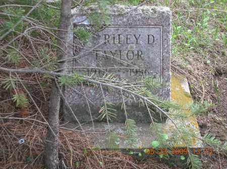 TAYLOR, RILEY D - Boulder County, Colorado | RILEY D TAYLOR - Colorado Gravestone Photos