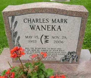 WANEKA, CHARLES MARK - Boulder County, Colorado | CHARLES MARK WANEKA - Colorado Gravestone Photos