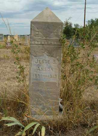 ANSON, JESSE B. - Boulder County, Colorado | JESSE B. ANSON - Colorado Gravestone Photos