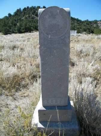 ALLENDER, WILLIAM H. - Chaffee County, Colorado | WILLIAM H. ALLENDER - Colorado Gravestone Photos