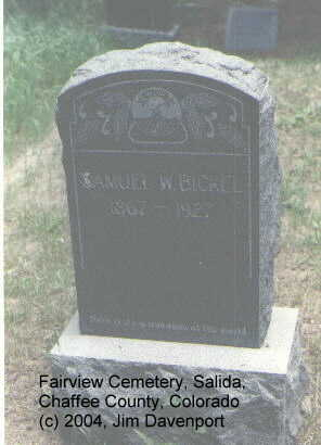 BICKEL, SAMUEL - Chaffee County, Colorado | SAMUEL BICKEL - Colorado Gravestone Photos