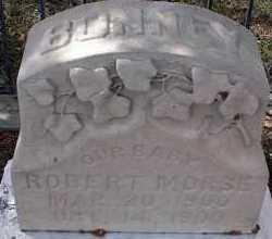 BONNEY, ROBERT MORSE - Chaffee County, Colorado | ROBERT MORSE BONNEY - Colorado Gravestone Photos
