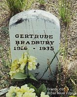 BRADBURY, GERTRUDE - Chaffee County, Colorado | GERTRUDE BRADBURY - Colorado Gravestone Photos