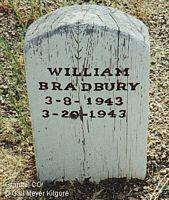 BRADBURY, WILLIAM JOSEPH - Chaffee County, Colorado | WILLIAM JOSEPH BRADBURY - Colorado Gravestone Photos
