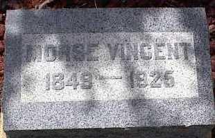 BROWN, MORSE VINCENT - Chaffee County, Colorado | MORSE VINCENT BROWN - Colorado Gravestone Photos