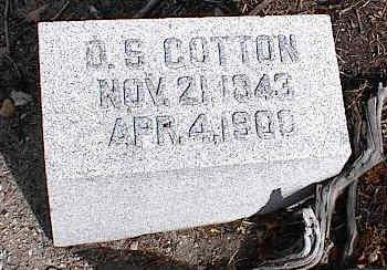 COTTON, D. S. - Chaffee County, Colorado | D. S. COTTON - Colorado Gravestone Photos