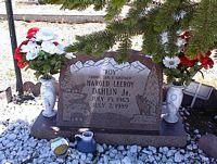 DAHLIN, JR., HAROLD LEEROY - Chaffee County, Colorado | HAROLD LEEROY DAHLIN, JR. - Colorado Gravestone Photos