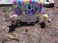 DOYLE, BONNIE DEE - Chaffee County, Colorado   BONNIE DEE DOYLE - Colorado Gravestone Photos