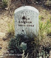 GALVIN, LEO - Chaffee County, Colorado | LEO GALVIN - Colorado Gravestone Photos