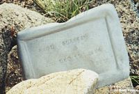 GLASSER, PAUL - Chaffee County, Colorado | PAUL GLASSER - Colorado Gravestone Photos