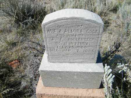COLE HOLLENBECK, CARRIE B - Chaffee County, Colorado | CARRIE B COLE HOLLENBECK - Colorado Gravestone Photos