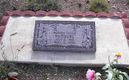 HUMBURG, AUDREY LUCILLE - Chaffee County, Colorado   AUDREY LUCILLE HUMBURG - Colorado Gravestone Photos