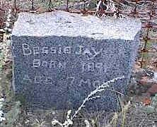 JAY, BESSIE - Chaffee County, Colorado | BESSIE JAY - Colorado Gravestone Photos
