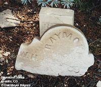 JONES, RAYMOND - Chaffee County, Colorado | RAYMOND JONES - Colorado Gravestone Photos