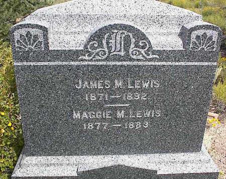 LEWIS, JAMES M. - Chaffee County, Colorado | JAMES M. LEWIS - Colorado Gravestone Photos