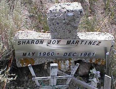 MARTINEZ, SHARON JOY - Chaffee County, Colorado   SHARON JOY MARTINEZ - Colorado Gravestone Photos