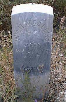 MCALELSE, WM H. - Chaffee County, Colorado | WM H. MCALELSE - Colorado Gravestone Photos