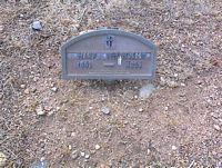 MCPHELEMY, MARY - Chaffee County, Colorado | MARY MCPHELEMY - Colorado Gravestone Photos
