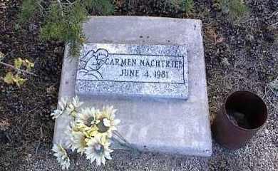 NACHTRIEB, CARMEN - Chaffee County, Colorado | CARMEN NACHTRIEB - Colorado Gravestone Photos