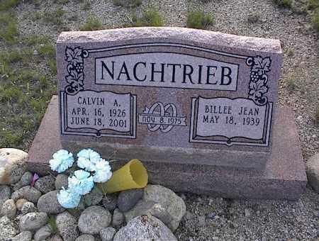 NACHTRIEB, CALVIN A. - Chaffee County, Colorado | CALVIN A. NACHTRIEB - Colorado Gravestone Photos