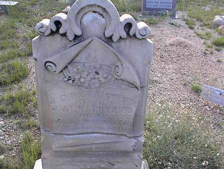 NACHTRIEB, J. GEORGE - Chaffee County, Colorado | J. GEORGE NACHTRIEB - Colorado Gravestone Photos