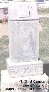 PACKARD, WALTER R. - Chaffee County, Colorado | WALTER R. PACKARD - Colorado Gravestone Photos