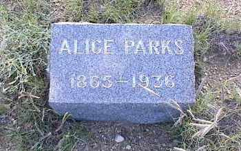 PARKS, ALICE - Chaffee County, Colorado   ALICE PARKS - Colorado Gravestone Photos
