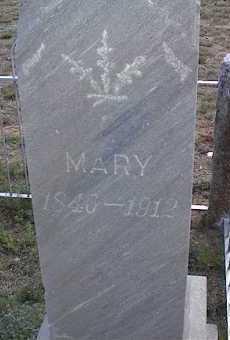 SCHULTZ, MARY - Chaffee County, Colorado | MARY SCHULTZ - Colorado Gravestone Photos