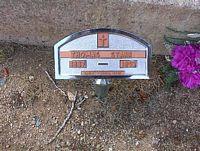 STARR, THOMAS - Chaffee County, Colorado | THOMAS STARR - Colorado Gravestone Photos