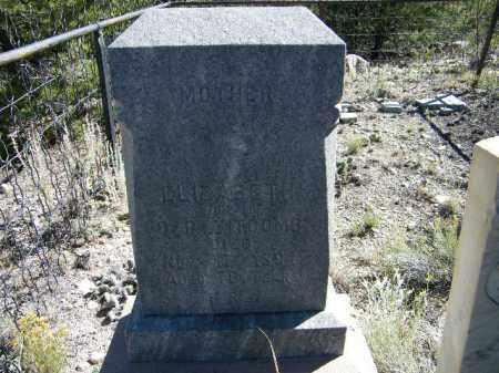TIPCOMBE, ELIZABETH - Chaffee County, Colorado | ELIZABETH TIPCOMBE - Colorado Gravestone Photos