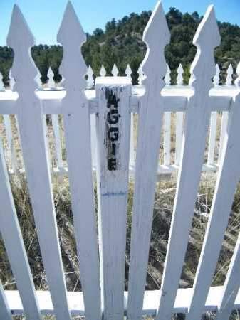 UNKNOWN, AUGGIE - Chaffee County, Colorado   AUGGIE UNKNOWN - Colorado Gravestone Photos